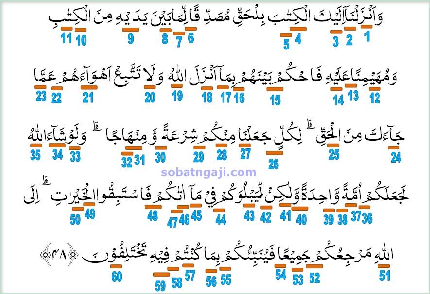 hukum tajwid surat al-Miadah ayat 48